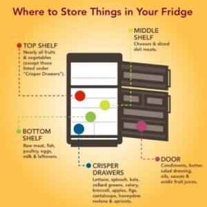Where to Store Food in your Fridge